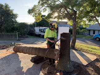 Nowra Stump truck